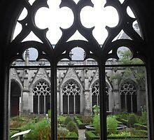Gothic beauty by Stephanie Owen