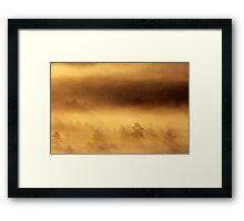 14.8.2015: Summer Morning in Torronsuo National Park I Framed Print