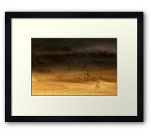 14.8.2015: Summer Morning in Torronsuo National Park V Framed Print
