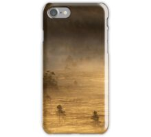 14.8.2015: Summer Morning in Torronsuo National Park VI iPhone Case/Skin