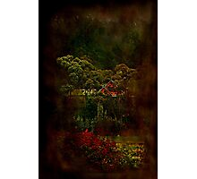 """""""Hidden From View ..."""" Photographic Print"""