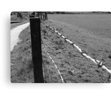Prickly Fence Canvas Print