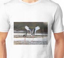 Sunset Bill Clacking Unisex T-Shirt