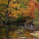 I Am The Autumnal Sun by LaFleureRouge1