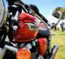 Triumph Thruxton 900 by Nigel Bangert