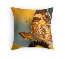 Harris' Checkerspot nectaring Orange Coneflower Throw Pillow