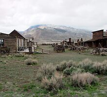Cody Old Trail Town, Wyoming, USA by AnnDixon