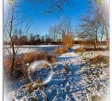 Happy Christmas by Elaine123