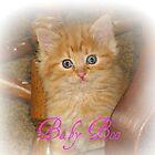 Baby Boo by AngieBanta
