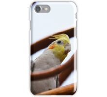 Peek a Beek iPhone Case/Skin