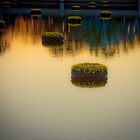 Repetition and Reflection by Guy Hoffman (aka creative365)