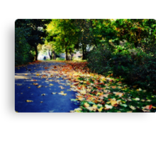 Autumnal walk Canvas Print