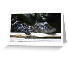 Baby Alligator Greeting Card