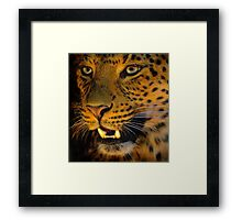 Young Cat Framed Print