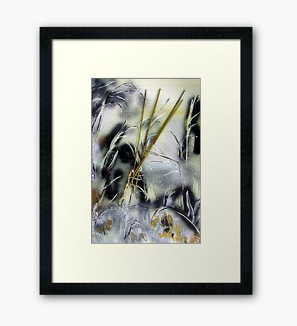 Tarot Visions Framed Print