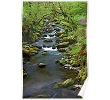 Dolgoch falls stream Poster