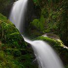 Dolgoch falls 2 by Andy Cork