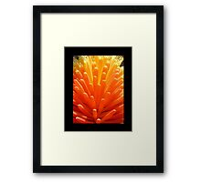 hot poker on black Framed Print
