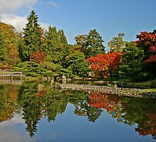 Fall at the Japanese Gardens in the Arboretum by Barb White