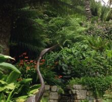 Water Feature and Ferns at Trebah Gardens, Cornwall Sticker