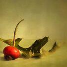 Natura Morta by Priska Wettstein