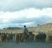 Cattle Drive  by © Betty E Duncan ~ Blue Mountain Blessings Photography