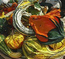 Nubby Squash by Ladydi