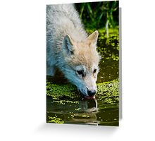 Mighty Big Thirst For A Little Fella Greeting Card