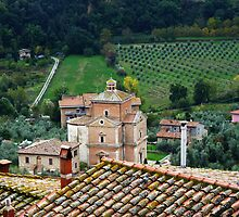Villa at Chianciano, Tuscany, with Olive trees!! by artfulvistas