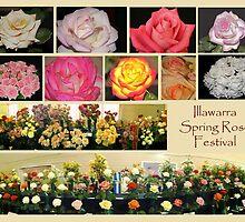 Illawarra Rose Festival 2010 by Coloursofnature