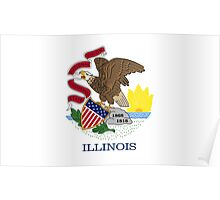 State Flags of the United States of America -  Illinois Poster