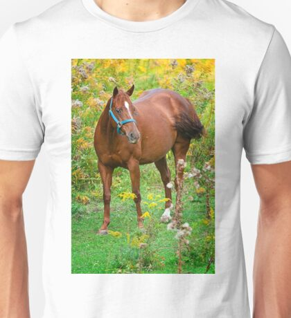 Horse in Field Unisex T-Shirt
