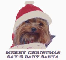 Merry Christmas Say`s Baby Santa by Gail Bridger
