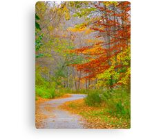Skirting the colourful issues Canvas Print
