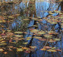 Reflections - inspired by Monet by Joanne Emery