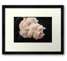 Love, Hugs and lots of Warm Fuzzies Framed Print