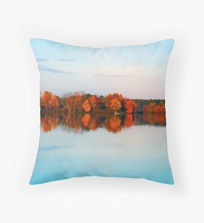 Kodachrome Throw Pillow