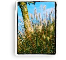 Whispering Tails Canvas Print