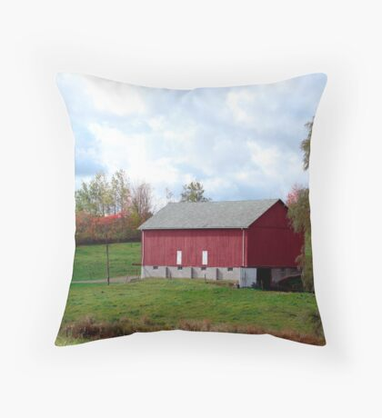 The Red Barn and the Willow Throw Pillow