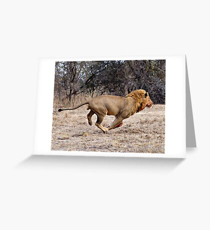 The Chase Greeting Card