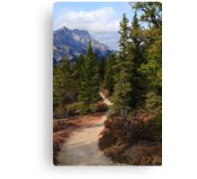 Trail in Banff Canvas Print