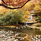 Tom Branch Falls in Autumn by NCBobD