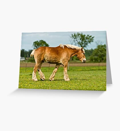 Work Horse Greeting Card