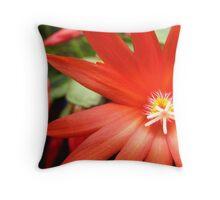Red Zygocactus Throw Pillow