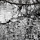 winters reflections by john  Lenagan