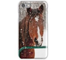 Horse In Snow Storm iPhone Case/Skin