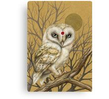 Miss Owl Canvas Print