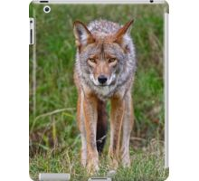 Coyote iPad Case/Skin