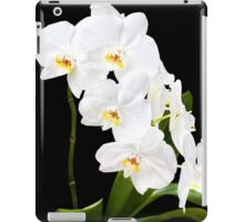 Orchid - 24 iPad Case/Skin