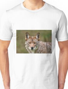 Coyote Portrait  Unisex T-Shirt